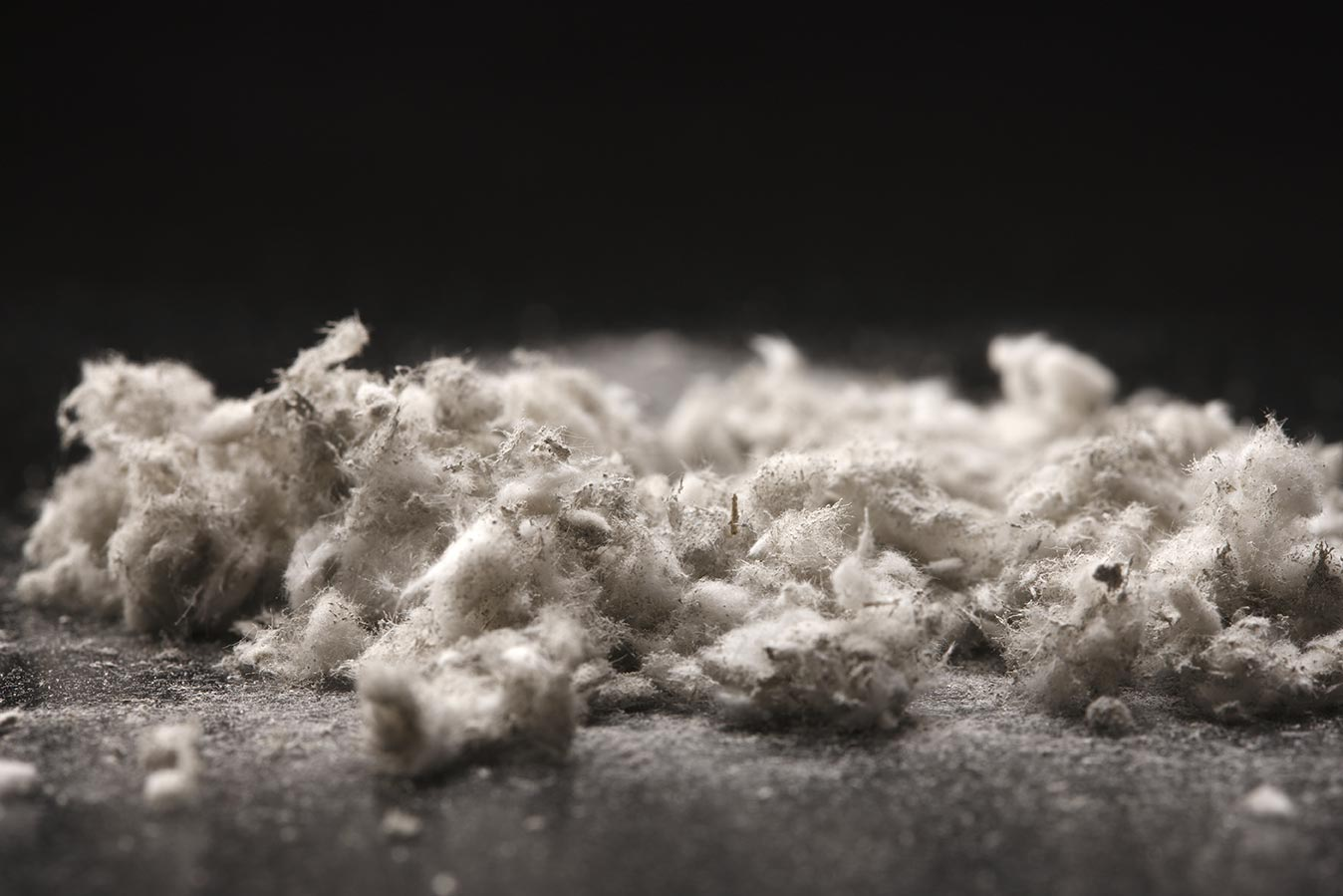 Close up of shredded asbestos fibres